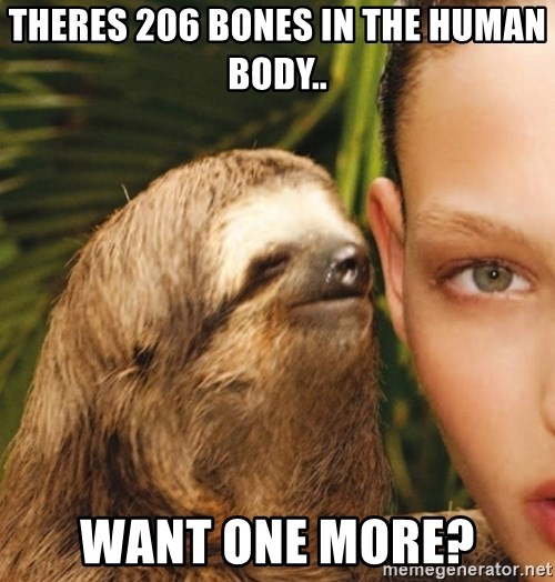 The Rape Sloth - theres 206 bones in the human body.. want one more?