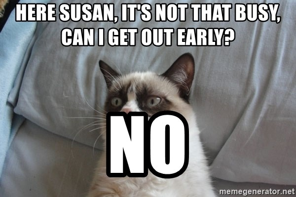 moody cat - Here Susan, it's not that busy, can i get out early? no