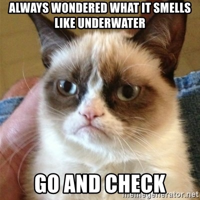 Grumpy Cat  - Always wondered what it smells like underwater Go And check