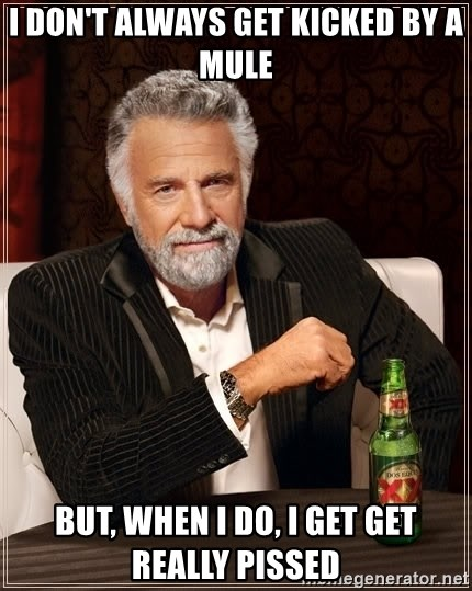 The Most Interesting Man In The World - i don't always get kicked by a mule but, when i do, i get get really pissed