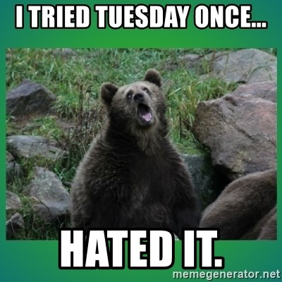 Speedster Bear - I TRIED TUESDAY ONCE... HATED IT.