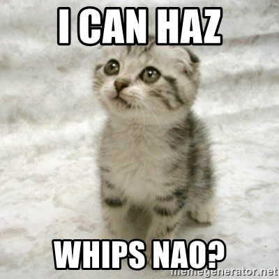 Can haz cat - i can haz whips nao?