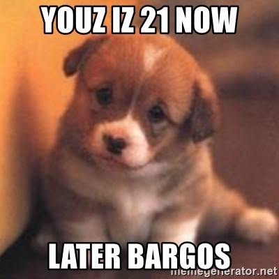 cute puppy - youz iz 21 now later bargos