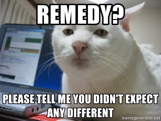 Serious Cat - Remedy? Please tell me you didn't expect any different