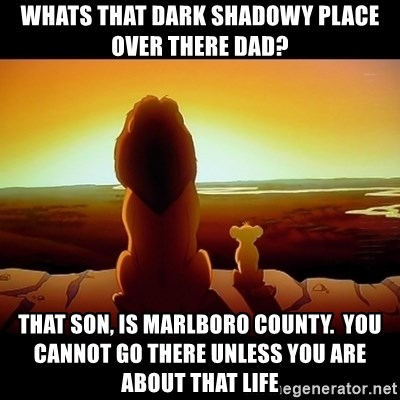 Simba - WHATS THAT DARK SHADOWY PLACE OVER THERE dAD? tHAT SON, IS mARLBORO cOUNTY.  yOU CANNOT GO THERE UNLESS YOU ARE ABOUT THAT LIFE
