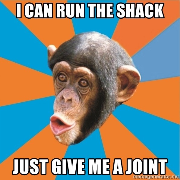 Stupid Monkey - I CAN RUN THE SHACK JUST GIVE ME A JOINT