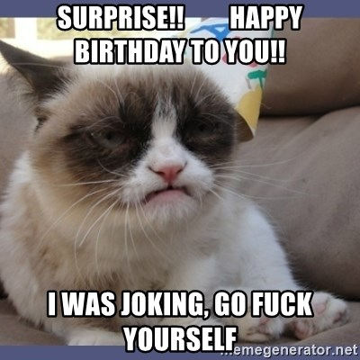 Birthday Grumpy Cat - surprise!!         Happy birthday to you!! I was joking, go fuck yourself