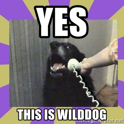 Yes, this is dog! - Yes this is wilddog