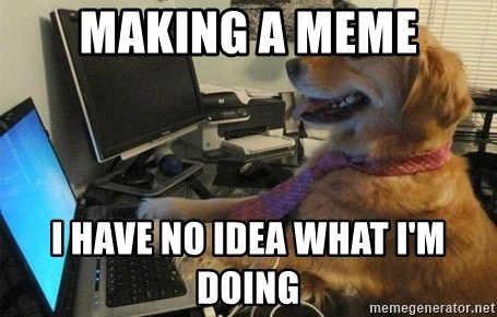 I have no idea what I'm doing - Dog with Tie - making a meme i have no idea what I'm doing