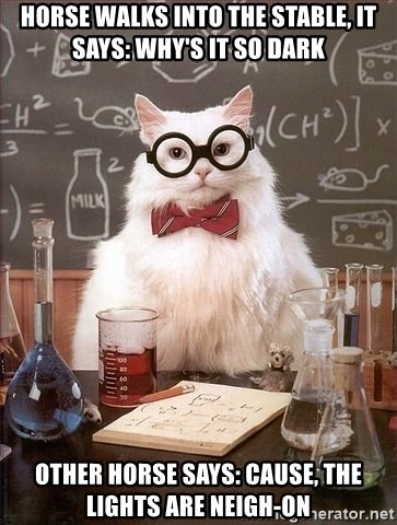 Chemistry Cat - horse walks into the stable, it says: why's it so dark other horse says: cause, the lights are neigh-on