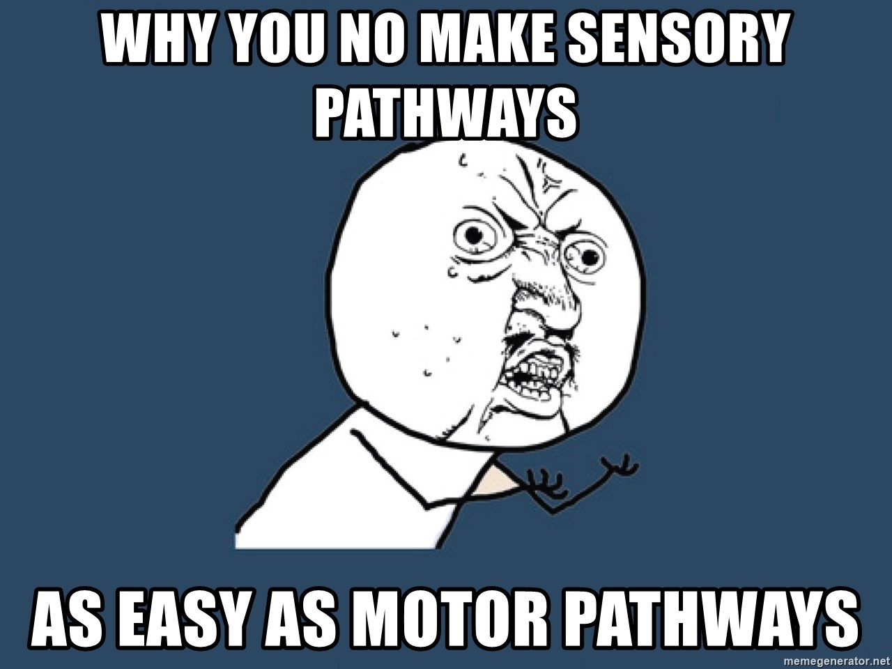 Y U No - Why you no make sensory pathways as easy as motor pathways