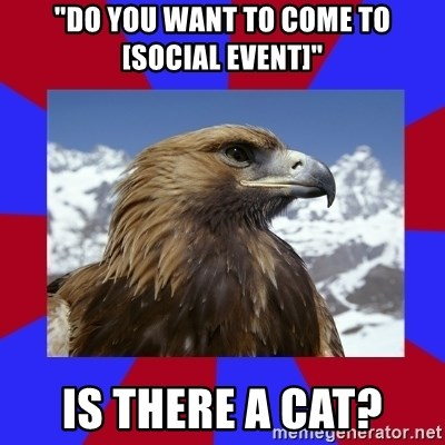"""Autistic Eagle - """"Do you want to come to [social event]"""" Is there a cat?"""