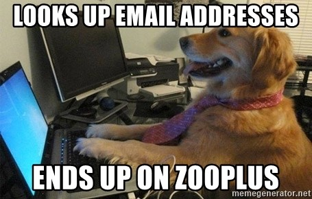 I have no idea what I'm doing - Dog with Tie - looks up email addresses ends up on Zooplus