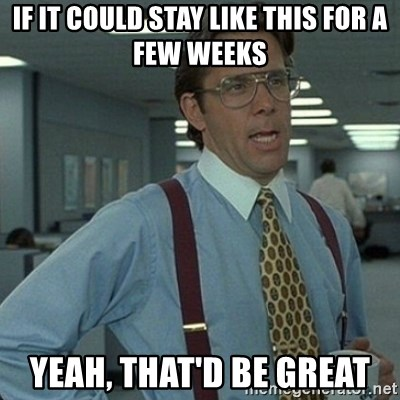 Yeah that'd be great... - If it could stay like this for a few weeks Yeah, that'd be great