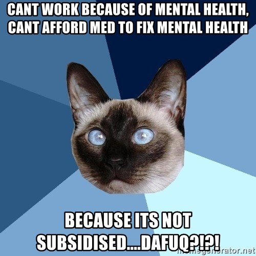 Chronic Illness Cat - Cant work because of mental health, cant afford med to fix mental health because its not subsidised....DAFUQ?!?!