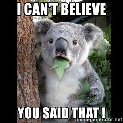Koala can't believe it - I CAN'T BELIEVE YOU SAID THAT !