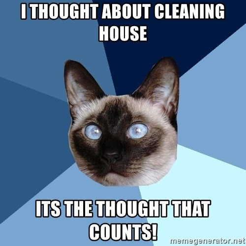 Chronic Illness Cat - I thought about cleaning house its the thought that counts!