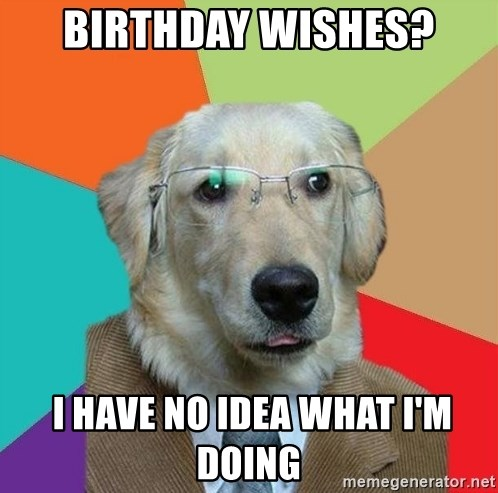 Business Dog - Birthday wishes?  I have no idea what i'm doing