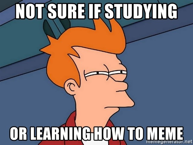 Futurama Fry - not sure if studying or learning how to meme