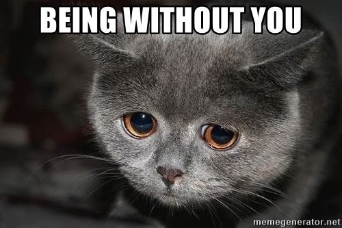 Sadcat - BEING WITHOUT YOU