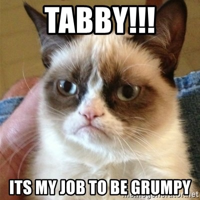 Grumpy Cat  - TABBy!!! Its my job to be grumpy