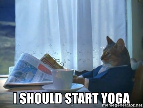 One Percent Cat -  I should start yoga