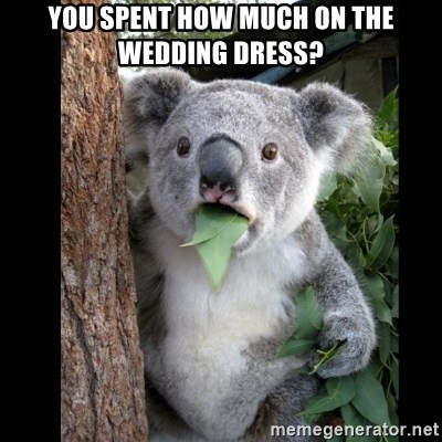 Koala can't believe it - yOU SPENT HOW MUCH ON THE WEDDING DRESS?