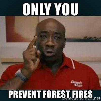 DONT YOU DARE - only you prevent forest fires