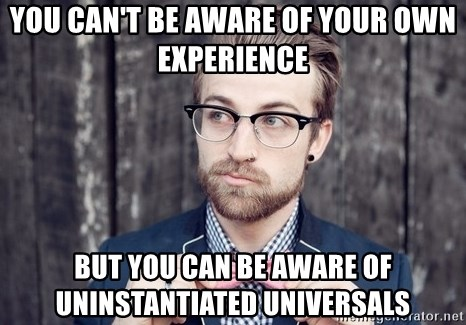 Scumbag Analytic Philosopher - YOU CAN'T BE AWARE OF YOUR OWN EXPERIENCE But you can be aware of uninstantiated universals
