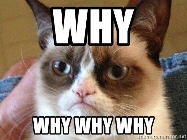Angry Cat Meme - why why why why