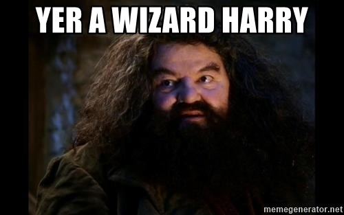 Yer A Wizard Harry Hagrid - YeR a wizArd harrY