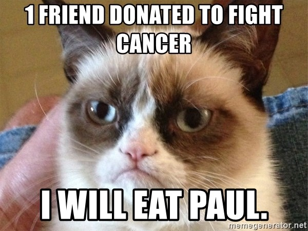 Angry Cat Meme - 1 Friend donated to fight Cancer I will Eat Paul.