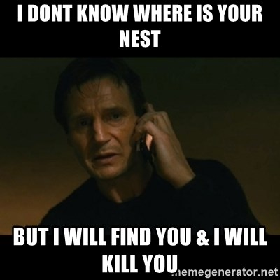 liam neeson taken - I dont know where is your nest but I will find you & i will kill you