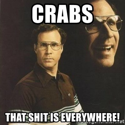 will ferrell - crabs that shit is everywhere!