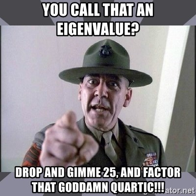 R. Lee Ermey - YOU CALL THAT AN EIGENVALUE? DROP AND GIMME 25, AND FACTOR THAT GODDAMN QUARTIC!!!