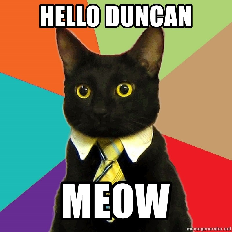 Business Cat - hello duncan meow