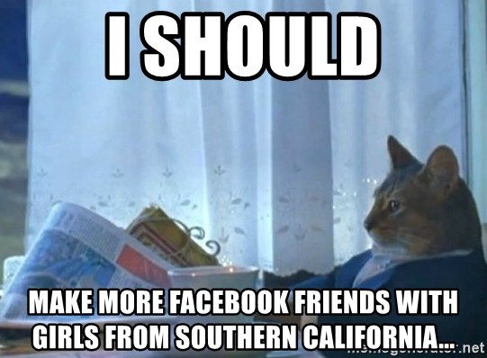 newspaper cat realization - I should Make more facebook friends with girls from Southern California...
