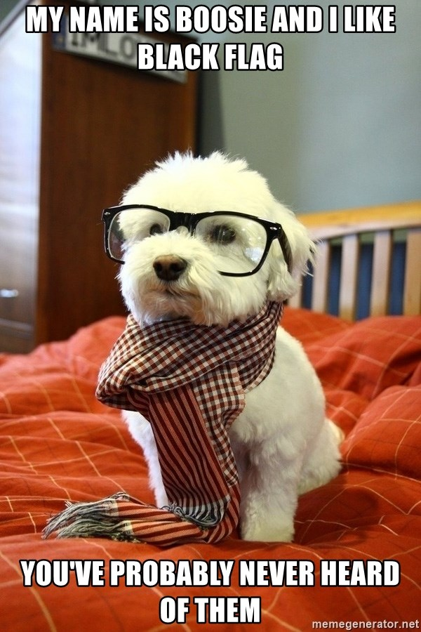 hipster dog - my name is boosie and i like black flag you've probably never heard of them