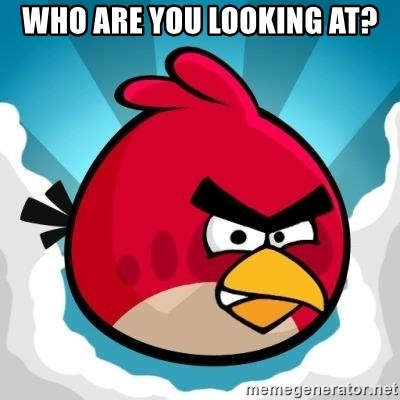 Angry Bird - WHO ARE YOU LOOKING AT?