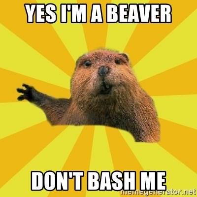 grumpy beaver - yes i'm a beaver don't bash me
