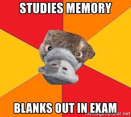 Psychology Student Platypus - studies memory blanks out in exam