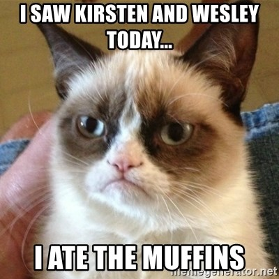 not funny cat - I saw kirsten and wesley today... i ate the muffins