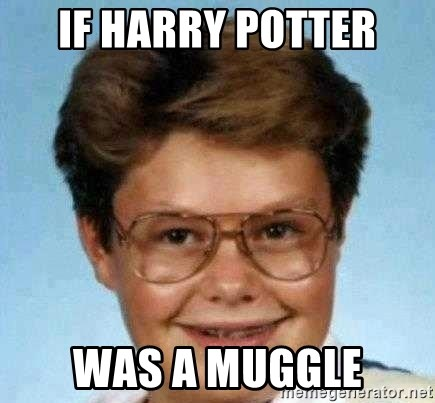 good luck larry hd - IF HARRY POTTER WAS A MUGGLE