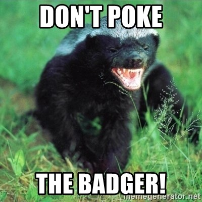 Honey Badger Actual - DON'T POKE THE BADGER!