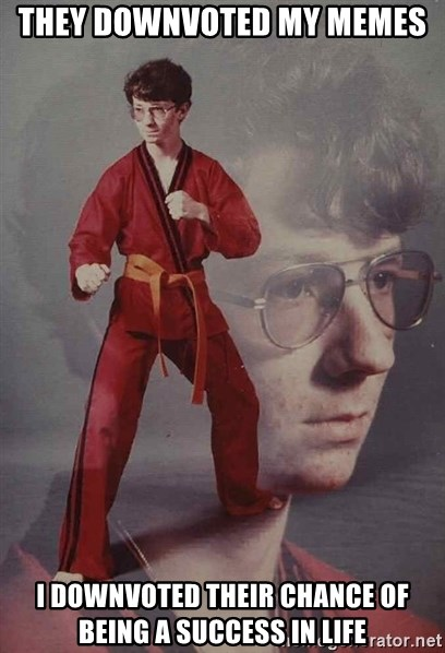 PTSD Karate Kyle - they downvoted my memes i downvoted their chance of being a success in life