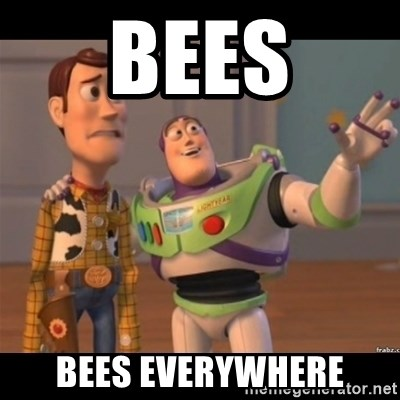 Buzz lightyear meme fixd - Bees Bees everywhere