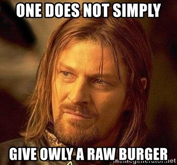 Boromir - One does not simply Give owly a raw burger