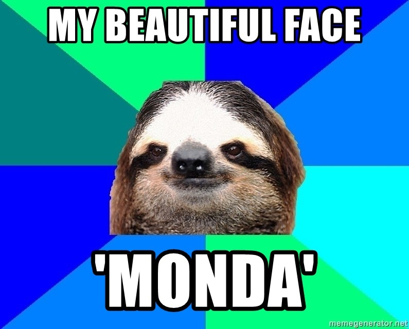 Socially Lazy Sloth - MY BEAUTIFUL FACE 'MONDA'