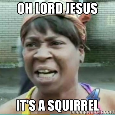 Sweet Brown Meme - Oh Lord jesus  it's a squirrel