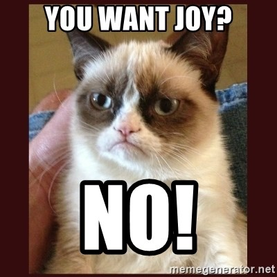 Tard the Grumpy Cat - You Want Joy? NO!